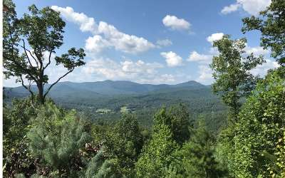 Mineral Bluff Residential Lots & Land For Sale: Lot99 Pontoosuc Trail