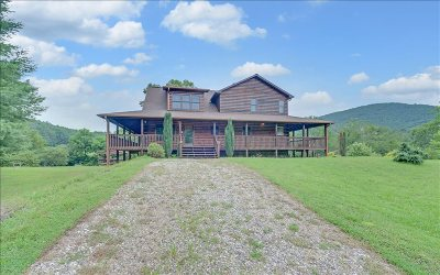 Blue Ridge Single Family Home For Sale: 308 Indian Village Road