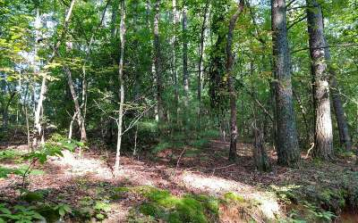 Ellijay Residential Lots & Land For Sale: Lot 4 Fowler Rd.