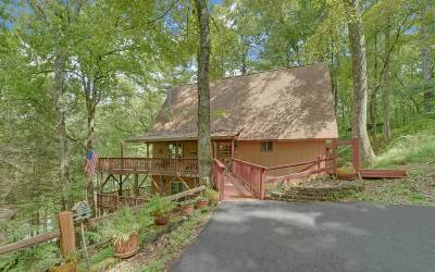 Suches Single Family Home For Sale: 244 Eagles Nest Circle