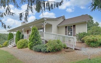 Blairsville Single Family Home For Sale: 57 Robert Hull Lane