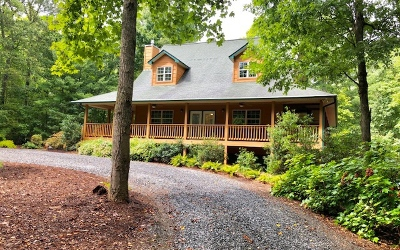 Blairsville Single Family Home For Sale: 397 Enchanted Woods Dr