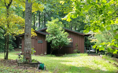 Blairsville Single Family Home For Sale: 106 Silver Fox Trail