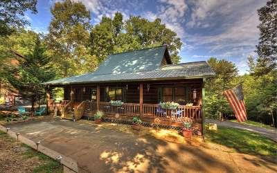Ellijay Single Family Home For Sale: 808 Villa Dr