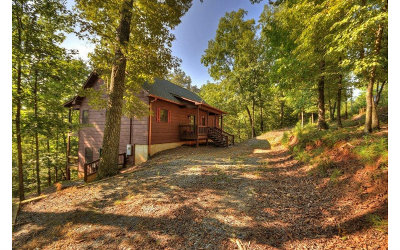 Ellijay Single Family Home For Sale: 597 Frigate Drive