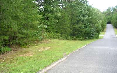 Mineral Bluff Residential Lots & Land For Sale: Lot 20 Autumn Ridge