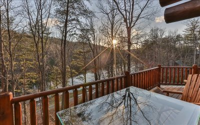 Ellijay Single Family Home For Sale: 279 N Lake Drive