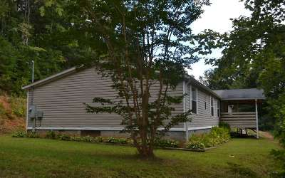 Ellijay Single Family Home For Sale: 717 N Piney Spur