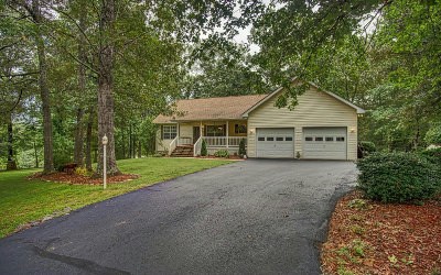 Blairsville Single Family Home For Sale: 292 Talon Tr