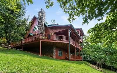 Blue Ridge Single Family Home For Sale: 461 Foxfire Road