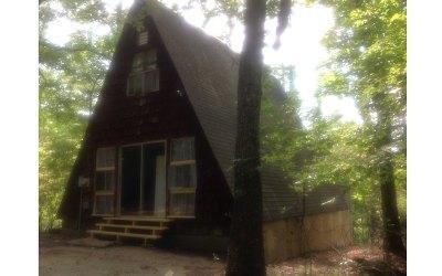 Warne Single Family Home For Sale: 578 Pine Log Circle