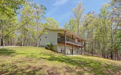 Blairsville Single Family Home For Sale: 256 Lonesome Pine Trail