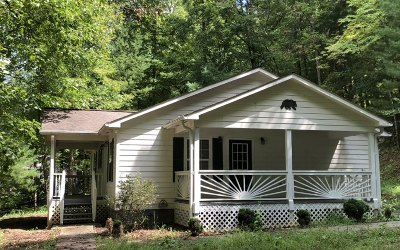 Blairsville Single Family Home For Sale: 177 Emory Circle