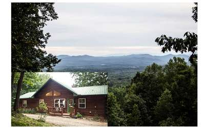 Murphy Single Family Home For Sale: 295 Beaver Gap Road
