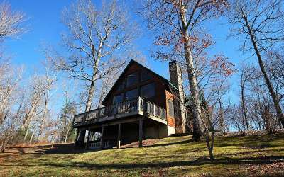 Hayesville Single Family Home For Sale: 95 Bear Cub Trail