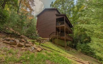 Blairsville Single Family Home For Sale: 83 Allison Lane