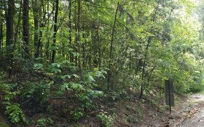 Fannin County Residential Lots & Land For Sale: Lot 1 Oakwood Trail