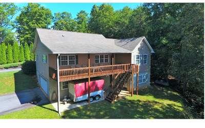 Warne Single Family Home For Sale: 478 Hillside Dr