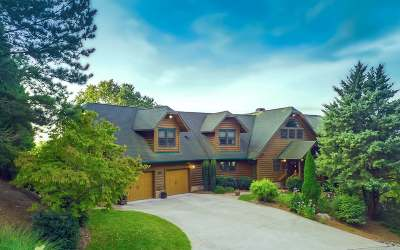 Ellijay Single Family Home For Sale: 29 Carters Cove Road