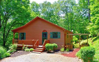 Ellijay Single Family Home For Sale: 127 Padget Lane