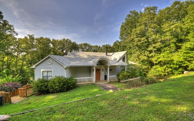 Blue Ridge Single Family Home For Sale: 141 White Oak Circle