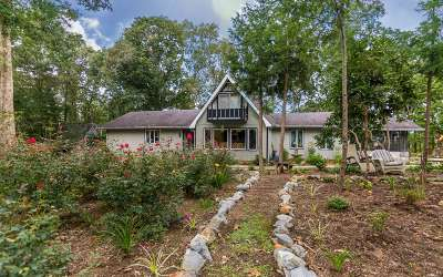 Blue Ridge Single Family Home For Sale: 334 Davis Road