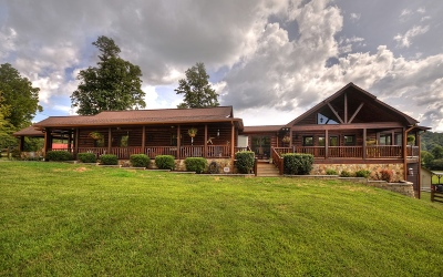 Mineral Bluff Single Family Home For Sale: 10 Laurel Springs Rd