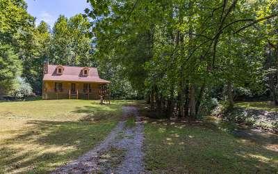 Ellijay Single Family Home For Sale: 1184 Johnson Mill Road