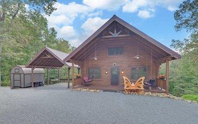 Ellijay Single Family Home For Sale: 328 Gartrell Street