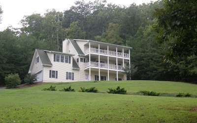 Hiawassee Single Family Home For Sale: 43 Brer Fox Ridge