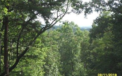 Ellijay Residential Lots & Land For Sale: Lt 34 Saw Blade Lane
