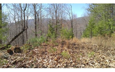 Ellijay Residential Lots & Land For Sale: 19 Ac Nocona Trail