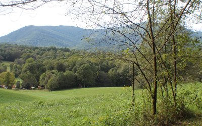Ellijay Residential Lots & Land For Sale: New Liberty Trail