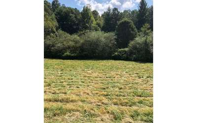 Ellijay Residential Lots & Land For Sale: Chatsworth Highway