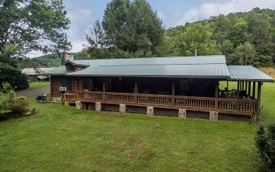 Blairsville Single Family Home For Sale: 54 Burnette Drive