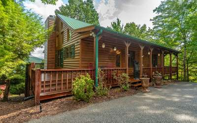Blue Ridge Single Family Home For Sale: 287 Necowa Cove Overlook