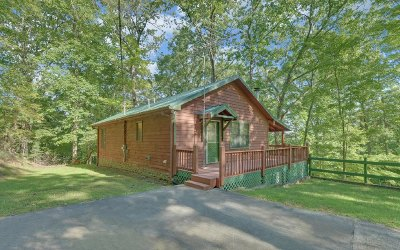 Ellijay Single Family Home For Sale: 862 Mountain Oak Drive