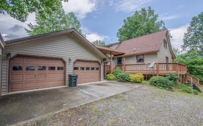 Blairsville Single Family Home For Sale: 9068 Bobby Jo Lane