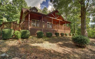 Hiawassee Single Family Home For Sale: 730 Gage Drive