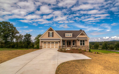 Blairsville Single Family Home For Sale: 591 Owen Glen Overlook