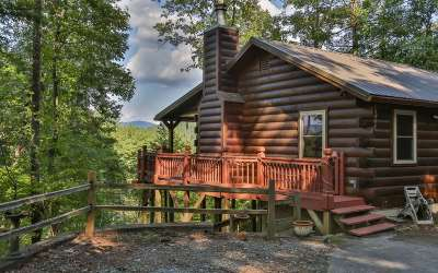 Ellijay Single Family Home For Sale: 108 Briar Creek Trail