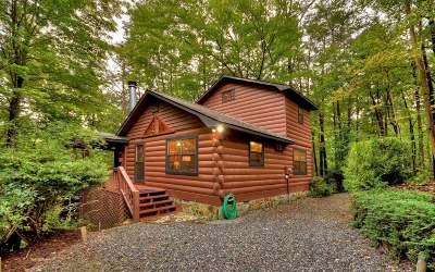 Blue Ridge Single Family Home For Sale: 947 Cherry Lake Drive