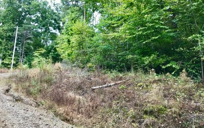 Fannin County Residential Lots & Land For Sale: Lot 8 Clay Circle