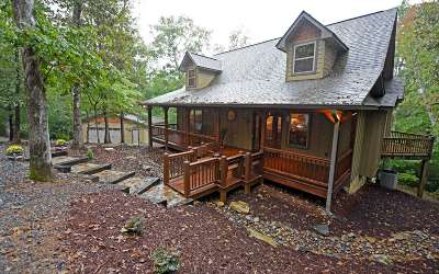 Mineral Bluff Single Family Home For Sale: 209 Coldwater Creek Rd
