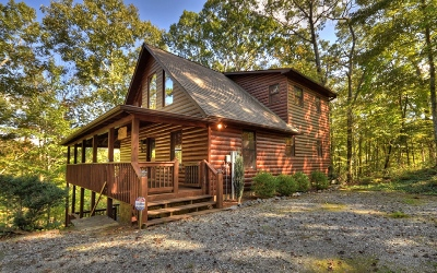 Mineral Bluff Single Family Home For Sale: 388 Granny Hughes Road