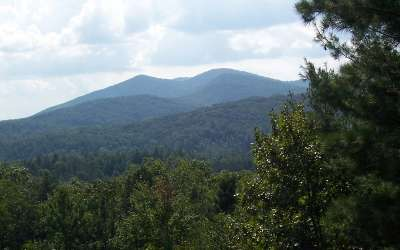 Murphy NC Residential Lots & Land For Sale: $15,000