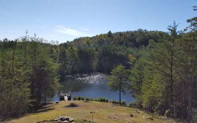 Fannin County Single Family Home For Sale: 116 Mountain Rivers Lane