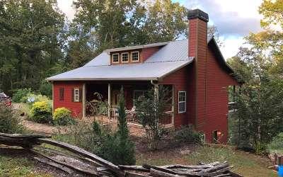 Ellijay Single Family Home For Sale: 480 Abbott Top Road