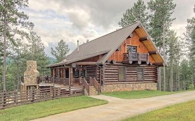 Blairsville Single Family Home For Sale: 491 Sandy Lake Lane