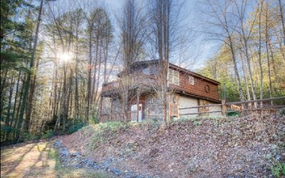 Blue Ridge Single Family Home For Sale: 39 Mountain Laurel Lane